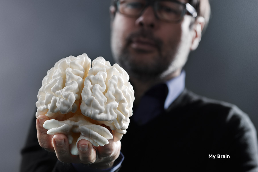 Adib Fricke, »My Brain« - 3d print of the artist's brain, bedeutungslabor.com